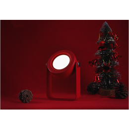 Multifunctional lamp with LED light that has lots of uses