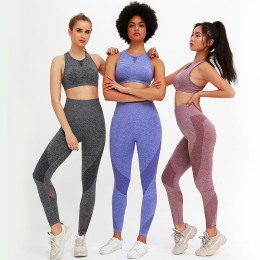 2PCS Mesh Seamless yoga set Sports Suits Women's Yoga Set High Waist GYM Fitness running Pants Top Sportswear Women Leggings+Bra