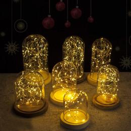 3M 30Led Xmas Decor LED Fire Tree Silver Flower Romantic Glass Cover Light