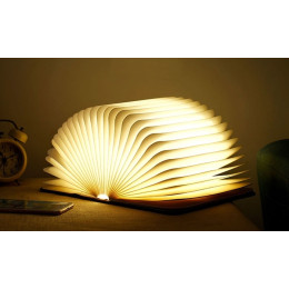 Foldable LED Book Lamp
