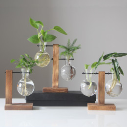 Table Desk Bulb Glass Hydroponic Vase planter with Wooden Stand and Metal Swivel Holder