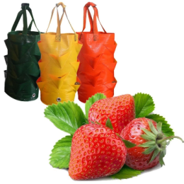 3 gallon strawberry planting bag PE beauty planting bag color