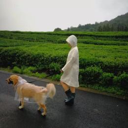 Dog Raincoat big Dog Medium-sized Dogs Pet Waterproof Clothing Jacket Clothes Puppy Casual