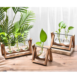 Hydroponic Glass Planter Bulb Vase with Wooden Stand Tray Tabletop Desk Decor Water Planting Propagation Home Decoration BJStore