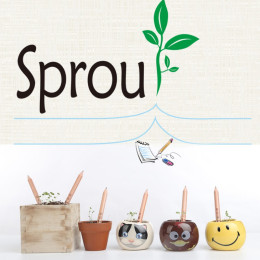 Novel Exotic Sprouts Pencil Germination Can Be Planted Pencils Buds