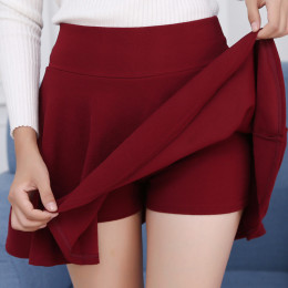 Basic Flared Casual Mini Skater Skirt