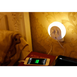 LED optical night light with USB charger