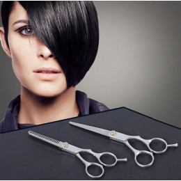 Professional Hairdressing Scissor Set