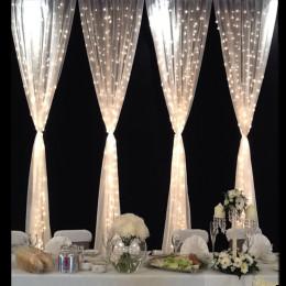 3M/2M/1M 300Led/240Led/120Led Christmas Weding Curtain String Light