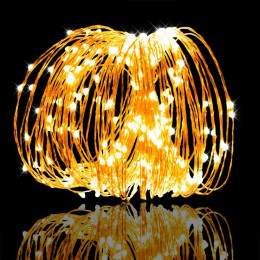 10M 100LED Cooper Wire Light for Christmas