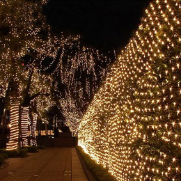 200Led Net Mesh Christmas Light