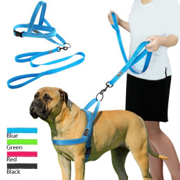 Adjustable Night Reflective Nylon Harness and Leash Set for Dogs Cats Pets