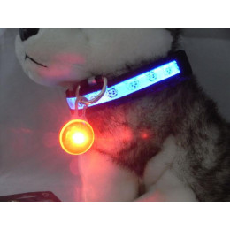 Glowing Pet Pendants