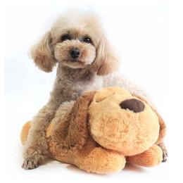 Plush pet training toy