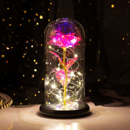 Rose glass shade LED light