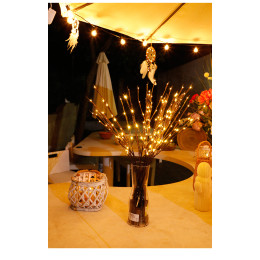 Decorative twigs with LED lights