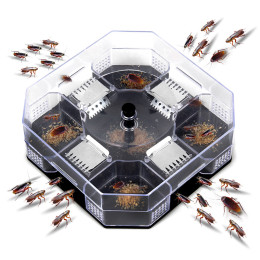 Household Effective Cockroach Traps Box
