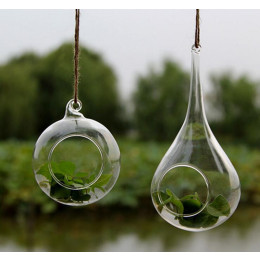 Transparent  Hanging Glass Vase
