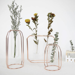 Wrought iron hanging transparent glass test tube flower stand